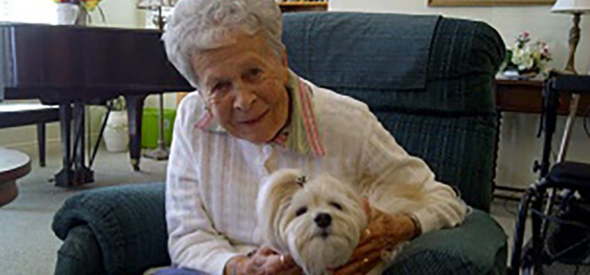 Grandma With a Dog